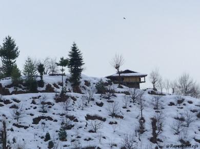 Pic4 - Rumsu Village.JPG